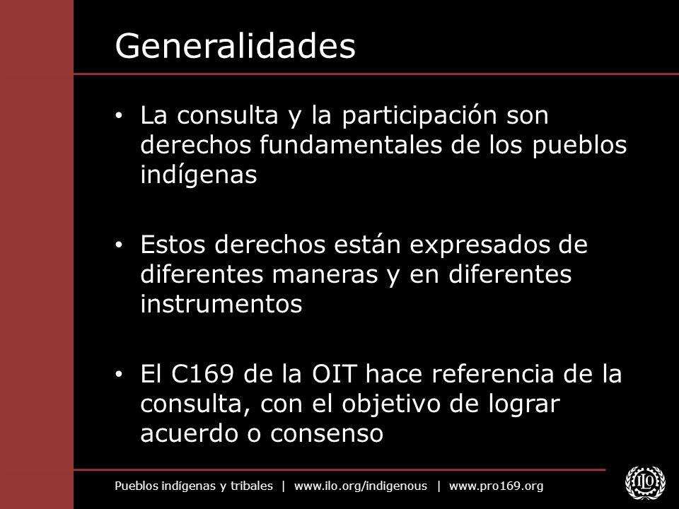 Pueblos indígenas y tribales | www.ilo.org/indigenous | www.pro169.org Generalidades La consulta y la participación son derechos fundamentales de los