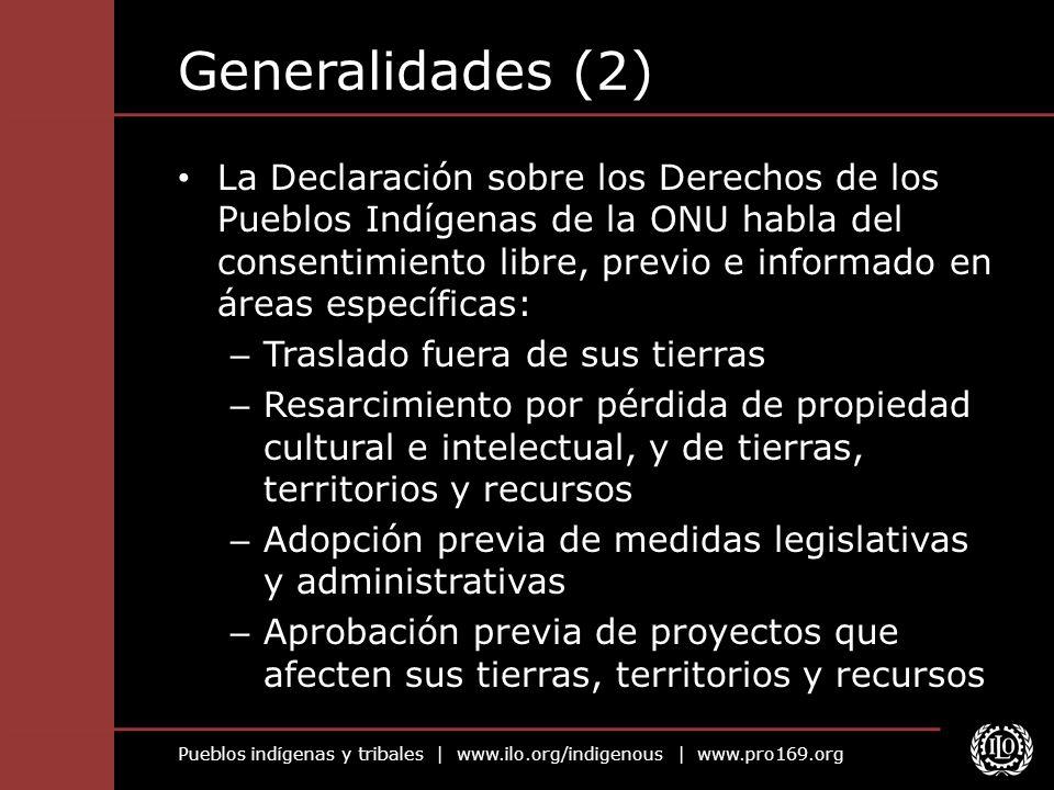 Pueblos indígenas y tribales | www.ilo.org/indigenous | www.pro169.org Generalidades (2) La Declaración sobre los Derechos de los Pueblos Indígenas de