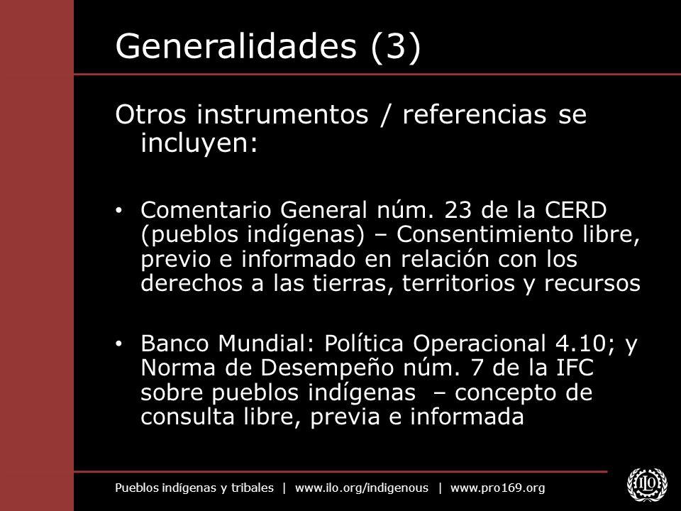 Pueblos indígenas y tribales | www.ilo.org/indigenous | www.pro169.org Generalidades (3) Otros instrumentos / referencias se incluyen: Comentario Gene