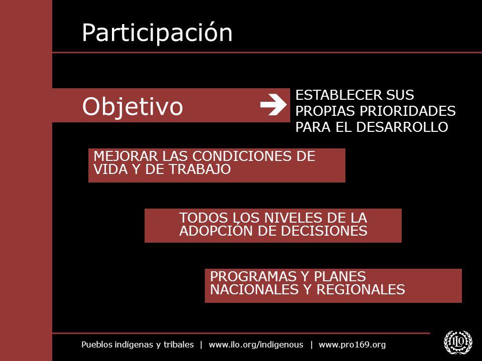 Pueblos indígenas y tribales | www.ilo.org/indigenous | www.pro169.org Objetivo Participación ESTABLECER SUS PROPIAS PRIORIDADES PARA EL DESARROLLO ME