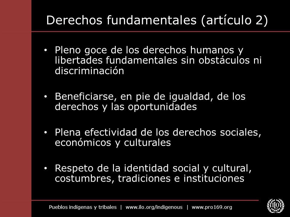 Pueblos indígenas y tribales   www.ilo.org/indigenous   www.pro169.org Derechos fundamentales (artículo 2) Pleno goce de los derechos humanos y libert