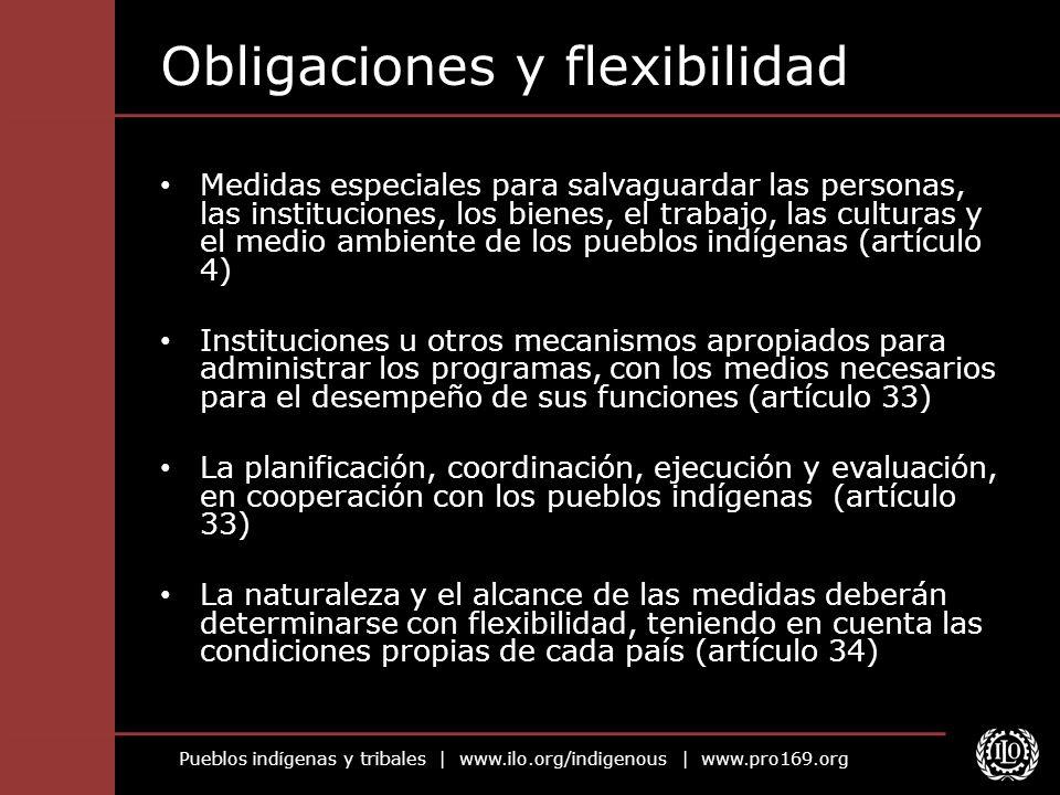 Pueblos indígenas y tribales   www.ilo.org/indigenous   www.pro169.org Obligaciones y flexibilidad Medidas especiales para salvaguardar las personas,