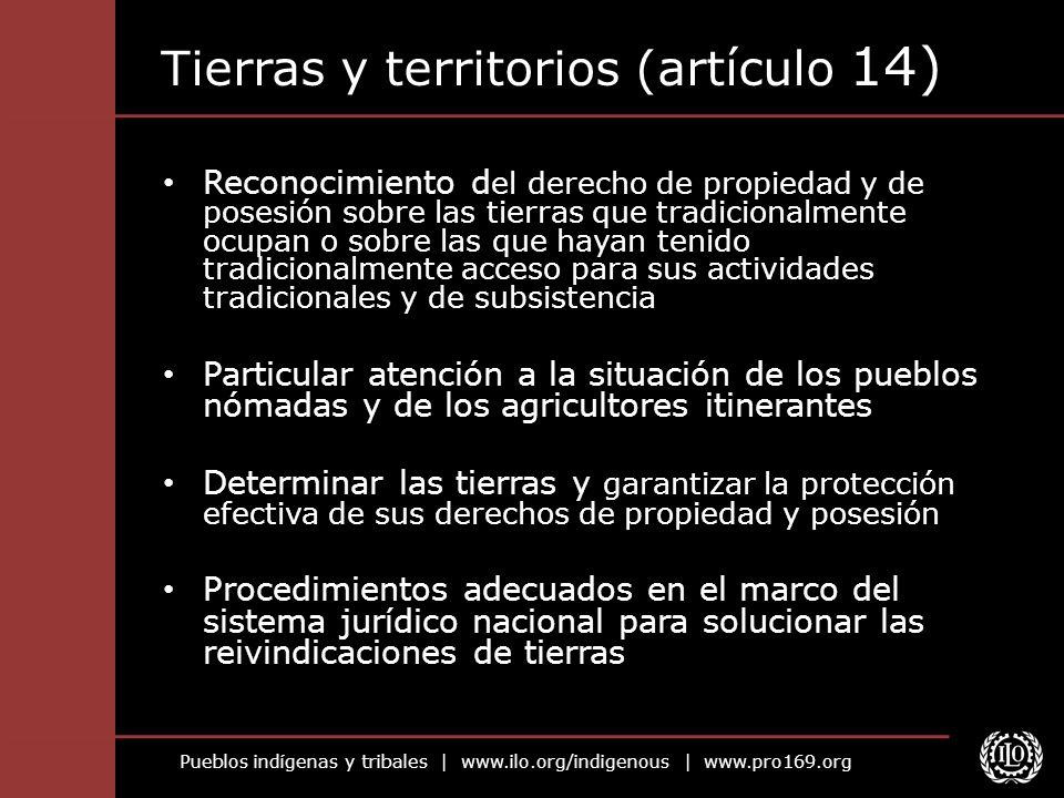 Pueblos indígenas y tribales   www.ilo.org/indigenous   www.pro169.org Tierras y territorios (artículo 14) Reconocimiento d el derecho de propiedad y