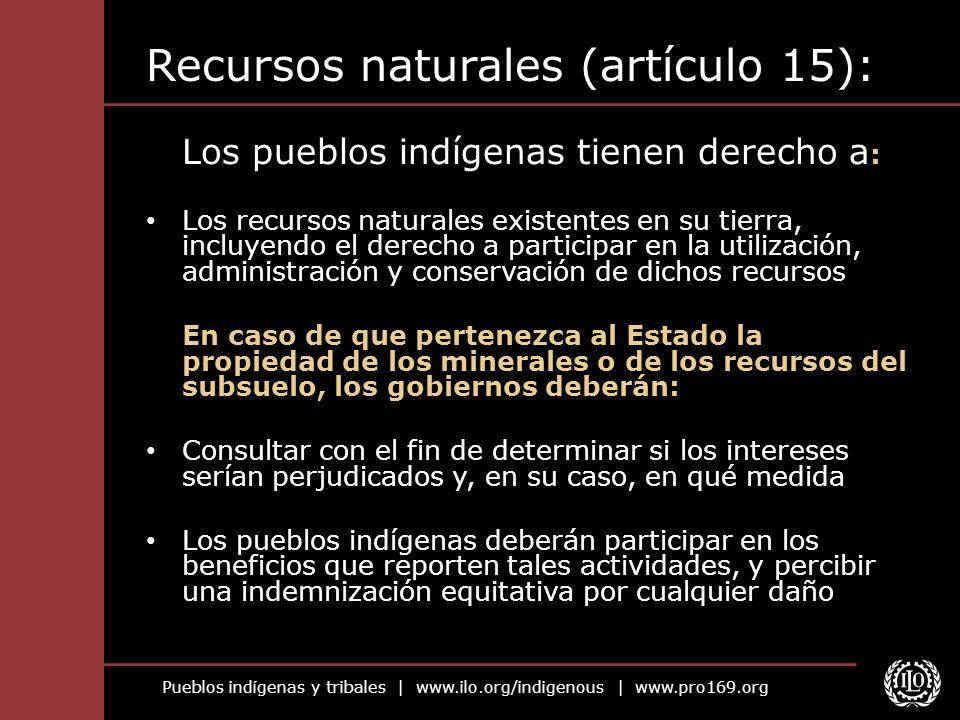 Pueblos indígenas y tribales   www.ilo.org/indigenous   www.pro169.org Recursos naturales (artículo 15): Los pueblos indígenas tienen derecho a : Los