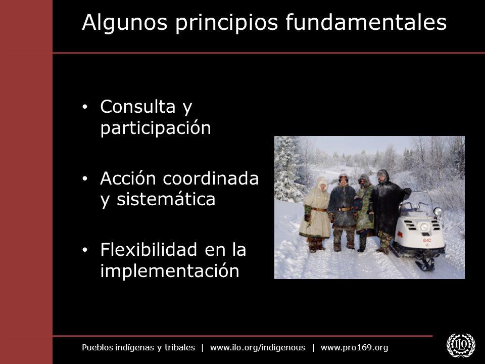 Pueblos indígenas y tribales | www.ilo.org/indigenous | www.pro169.org Mecanismos de implementación El C.169 exige: Medidas especiales para salvaguardar las instituciones, cultura, medio ambiente...