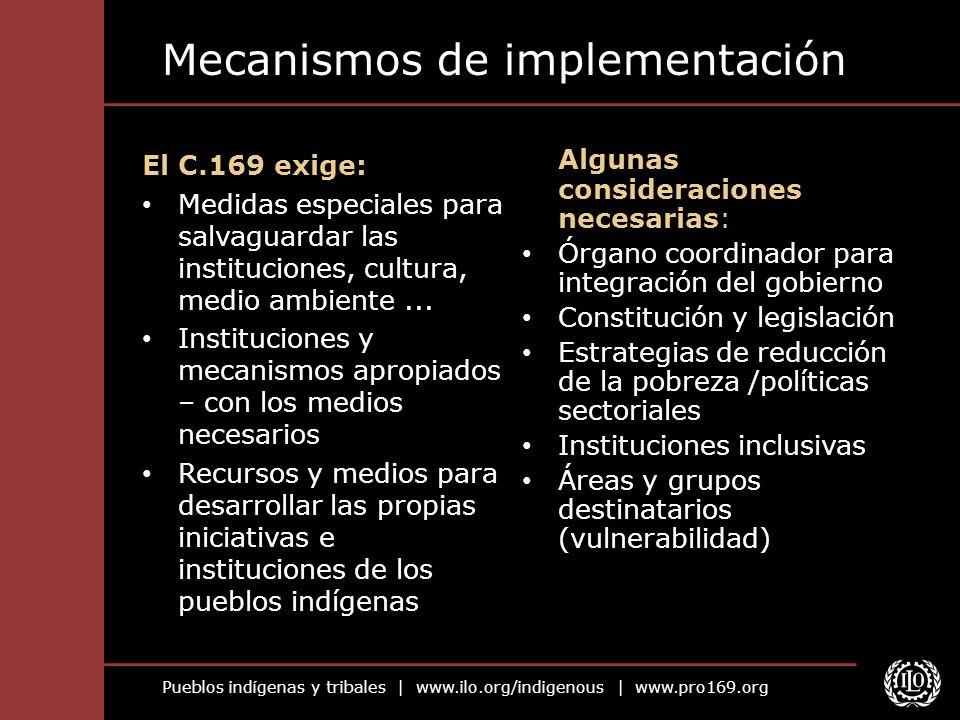 Pueblos indígenas y tribales | www.ilo.org/indigenous | www.pro169.org Mecanismos de implementación El C.169 exige: Medidas especiales para salvaguard
