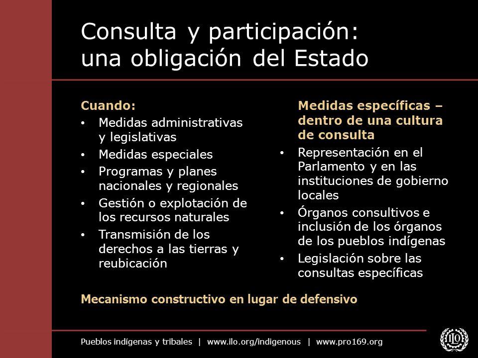 Pueblos indígenas y tribales | www.ilo.org/indigenous | www.pro169.org Consulta y participación: una obligación del Estado Medidas específicas – dentr