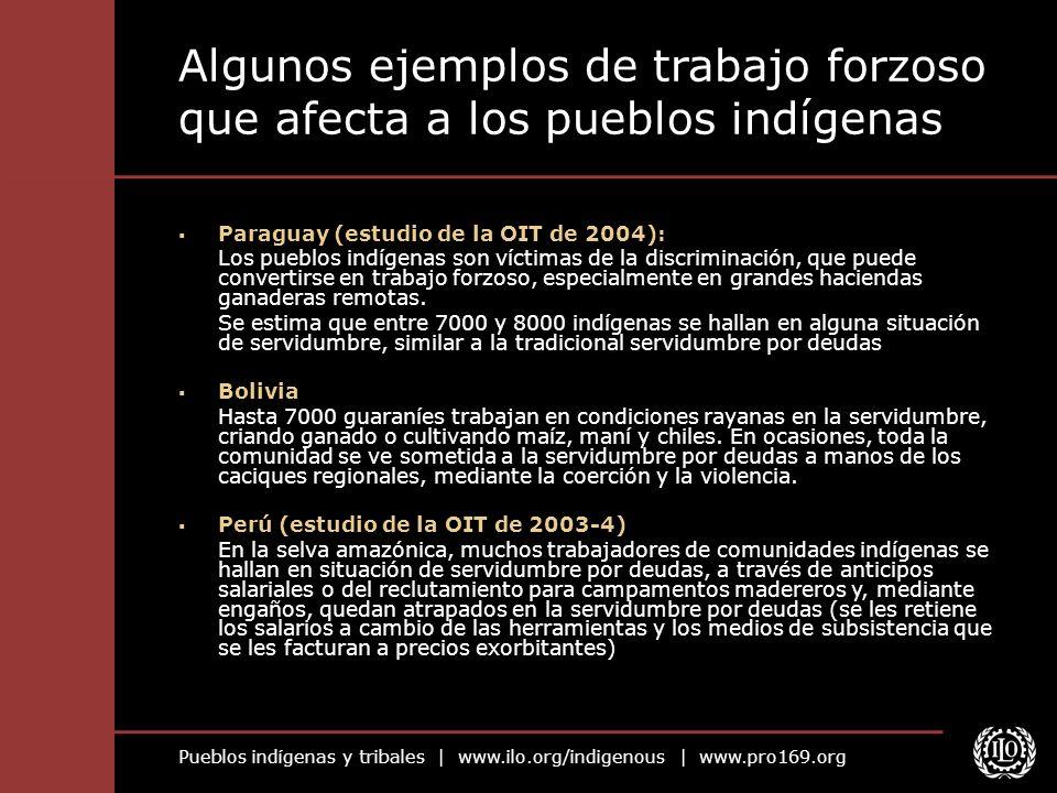 Pueblos indígenas y tribales | www.ilo.org/indigenous | www.pro169.org Algunos ejemplos de trabajo forzoso que afecta a los pueblos indígenas Paraguay (estudio de la OIT de 2004): Los pueblos indígenas son víctimas de la discriminación, que puede convertirse en trabajo forzoso, especialmente en grandes haciendas ganaderas remotas.