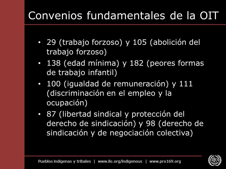 Pueblos indígenas y tribales | www.ilo.org/indigenous | www.pro169.org Convenios fundamentales de la OIT 29 (trabajo forzoso) y 105 (abolición del tra