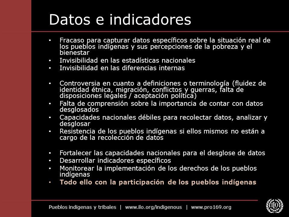 Pueblos indígenas y tribales | www.ilo.org/indigenous | www.pro169.org Datos e indicadores Fracaso para capturar datos específicos sobre la situación