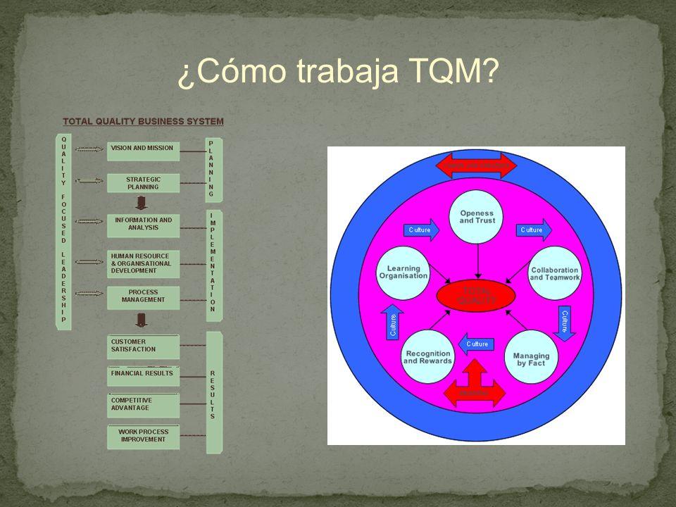 ¿Cómo trabaja TQM