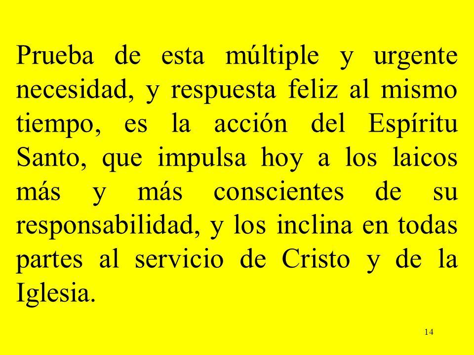 14 Prueba de esta múltiple y urgente necesidad, y respuesta feliz al mismo tiempo, es la acción del Espíritu Santo, que impulsa hoy a los laicos más y