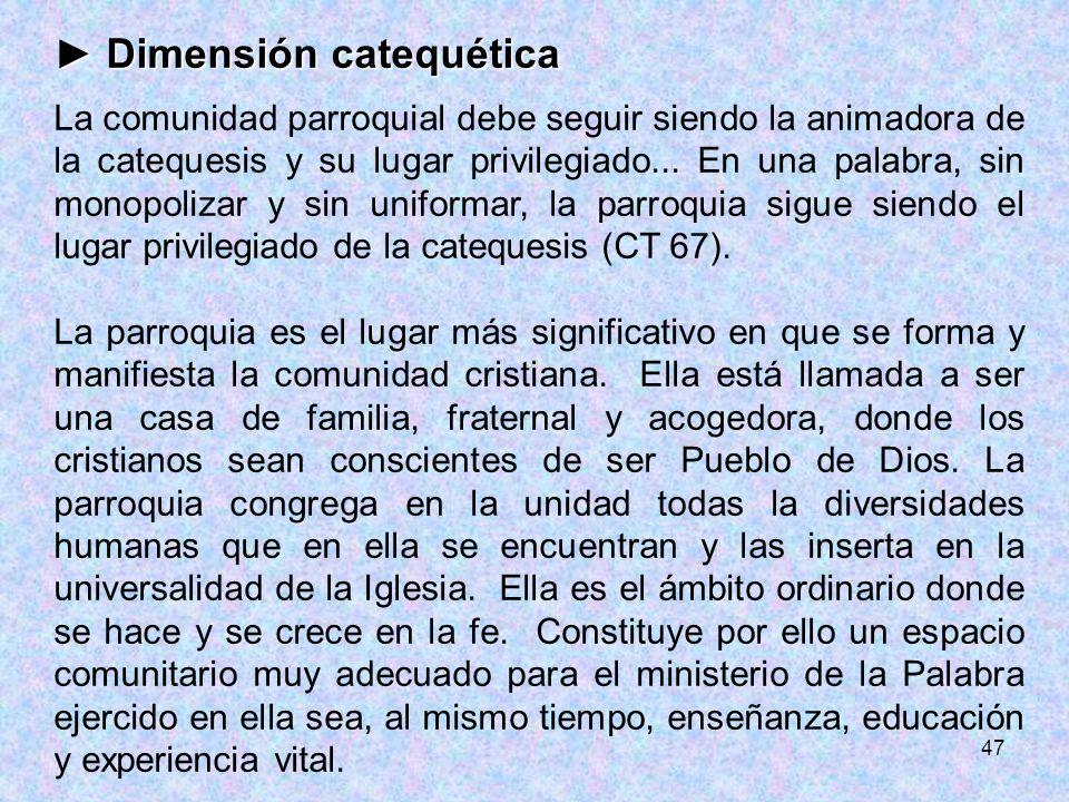 47 Dimensión catequética Dimensión catequética La comunidad parroquial debe seguir siendo la animadora de la catequesis y su lugar privilegiado... En