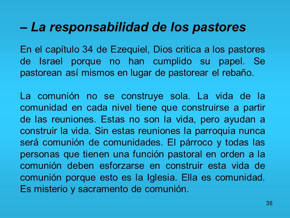 36 – La responsabilidad de los pastores En el capítulo 34 de Ezequiel, Dios critica a los pastores de Israel porque no han cumplido su papel. Se pasto