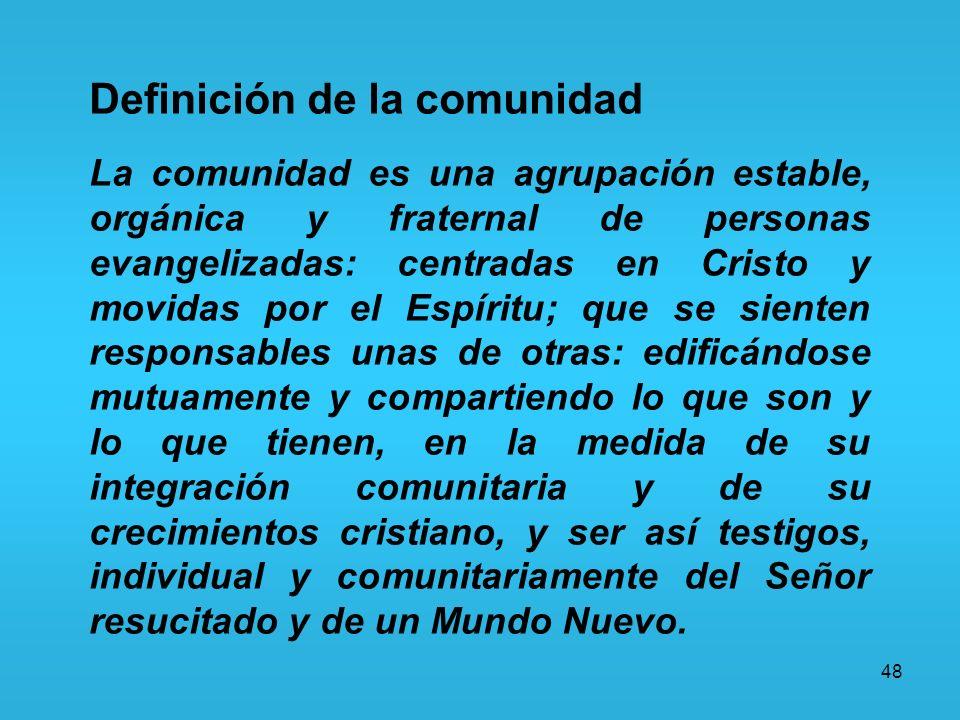 48 Definición de la comunidad La comunidad es una agrupación estable, orgánica y fraternal de personas evangelizadas: centradas en Cristo y movidas po
