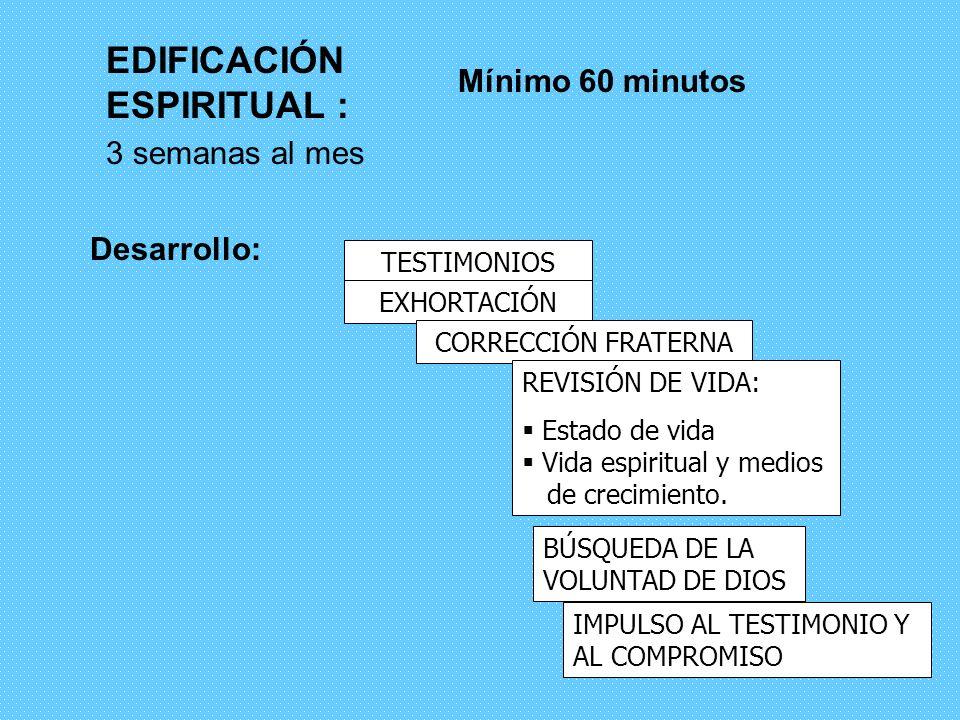 10 EDIFICACIÓN Y SOLIDARIDAD Edificación: implica 2 cosas: –crecimiento espiritual –unidad de la comunidad (Ef 4) Solidaridad Social: ver, analizar y