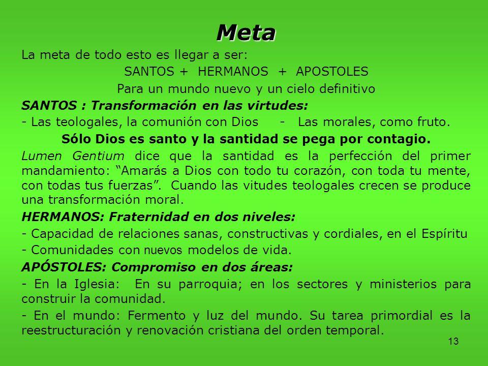 13 Meta La meta de todo esto es llegar a ser: SANTOS + HERMANOS + APOSTOLES Para un mundo nuevo y un cielo definitivo SANTOS : Transformación en las virtudes: - Las teologales, la comunión con Dios - Las morales, como fruto.