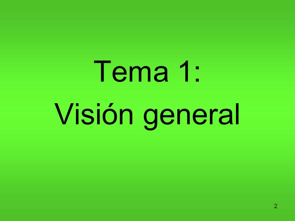 2 Tema 1: Visión general