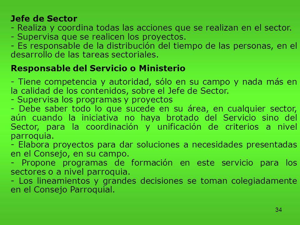 34 Jefe de Sector - Realiza y coordina todas las acciones que se realizan en el sector.
