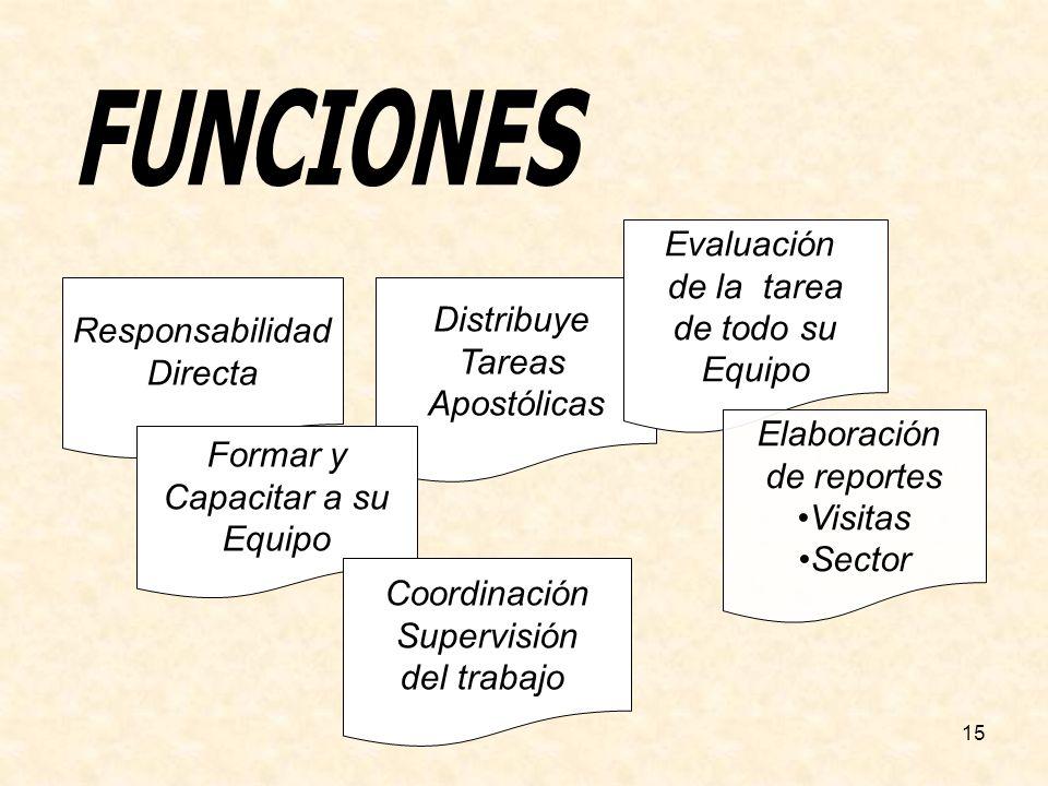 15 Distribuye Tareas Apostólicas Responsabilidad Directa Formar y Capacitar a su Equipo Coordinación Supervisión del trabajo Evaluación de la tarea de todo su Equipo Elaboración de reportes Visitas Sector