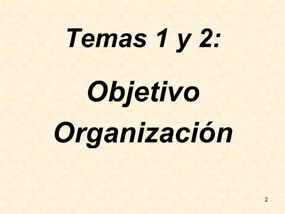 2 Temas 1 y 2: Objetivo Organización
