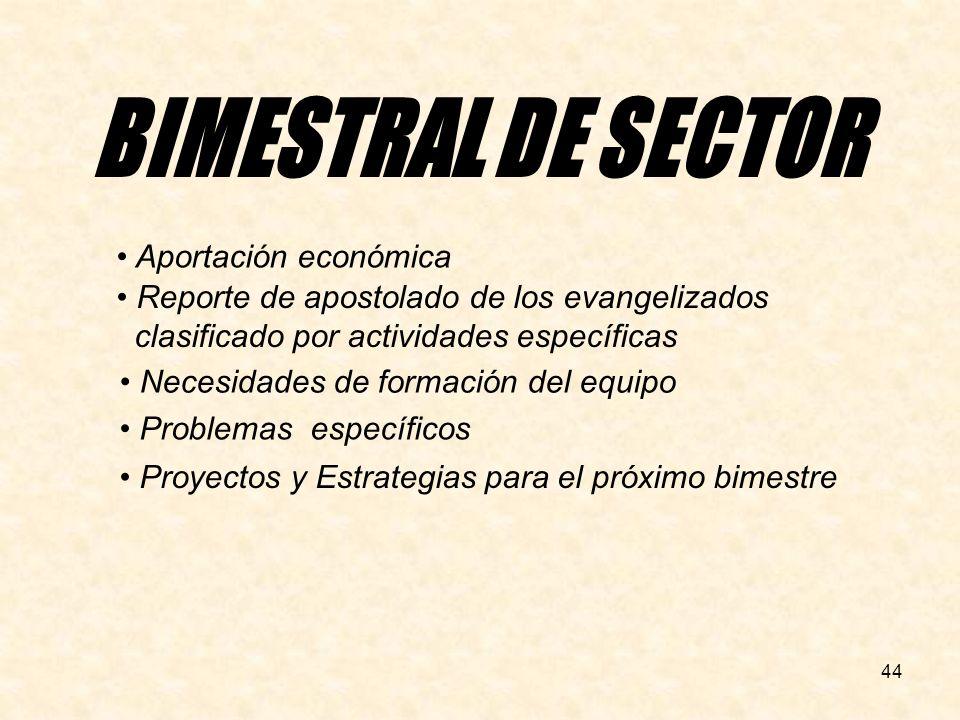 44 Necesidades de formación del equipo Reporte de apostolado de los evangelizados clasificado por actividades específicas Proyectos y Estrategias para el próximo bimestre Problemas específicos Aportación económica