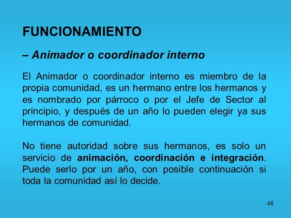 46 FUNCIONAMIENTO – Animador o coordinador interno El Animador o coordinador interno es miembro de la propia comunidad, es un hermano entre los herman
