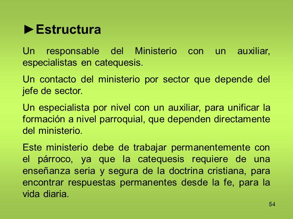 54 Estructura Un responsable del Ministerio con un auxiliar, especialistas en catequesis. Un contacto del ministerio por sector que depende del jefe d