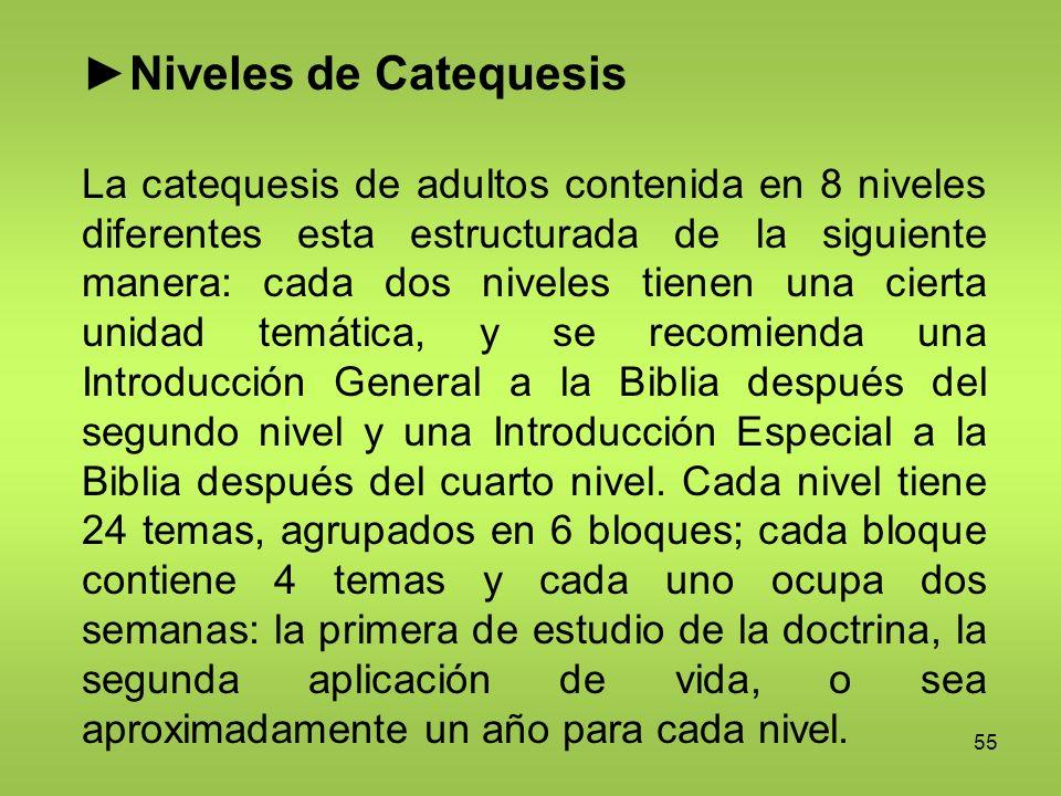55 Niveles de Catequesis La catequesis de adultos contenida en 8 niveles diferentes esta estructurada de la siguiente manera: cada dos niveles tienen