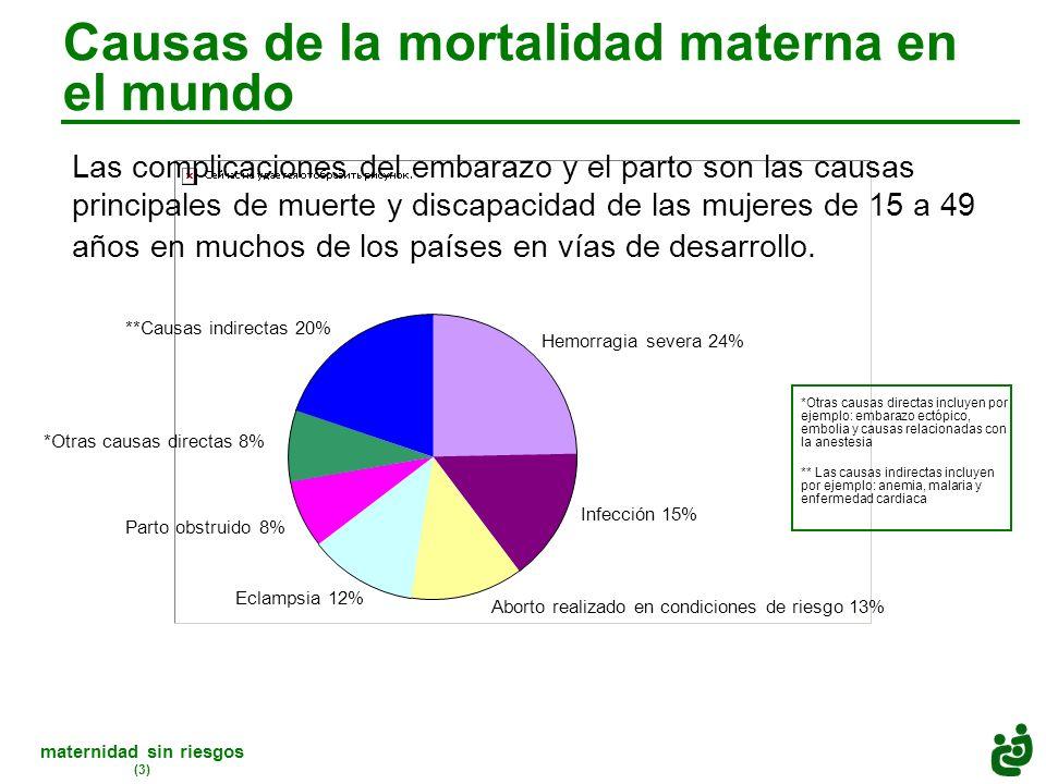 maternidad sin riesgos (3) Causas de la mortalidad materna en el mundo Las complicaciones del embarazo y el parto son las causas principales de muerte y discapacidad de las mujeres de 15 a 49 años en muchos de los países en vías de desarrollo.