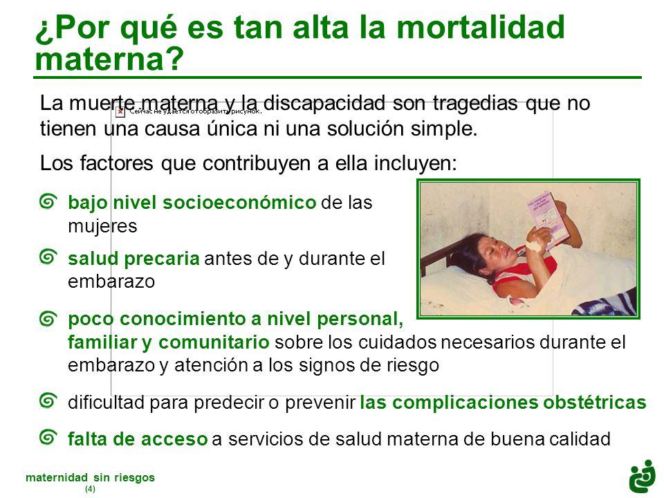maternidad sin riesgos (4) ¿Por qué es tan alta la mortalidad materna.