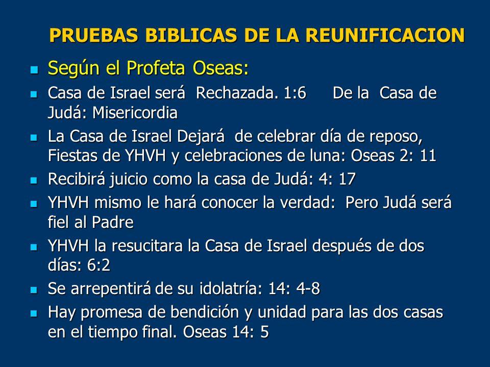 PRUEBAS BIBLICAS DE LA REUNIFICACION Según el Profeta Oseas: Según el Profeta Oseas: Casa de Israel será Rechazada. 1:6 De la Casa de Judá: Misericord