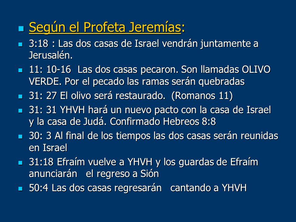 Según el Profeta Jeremías: Según el Profeta Jeremías: 3:18 : Las dos casas de Israel vendrán juntamente a Jerusalén. 3:18 : Las dos casas de Israel ve