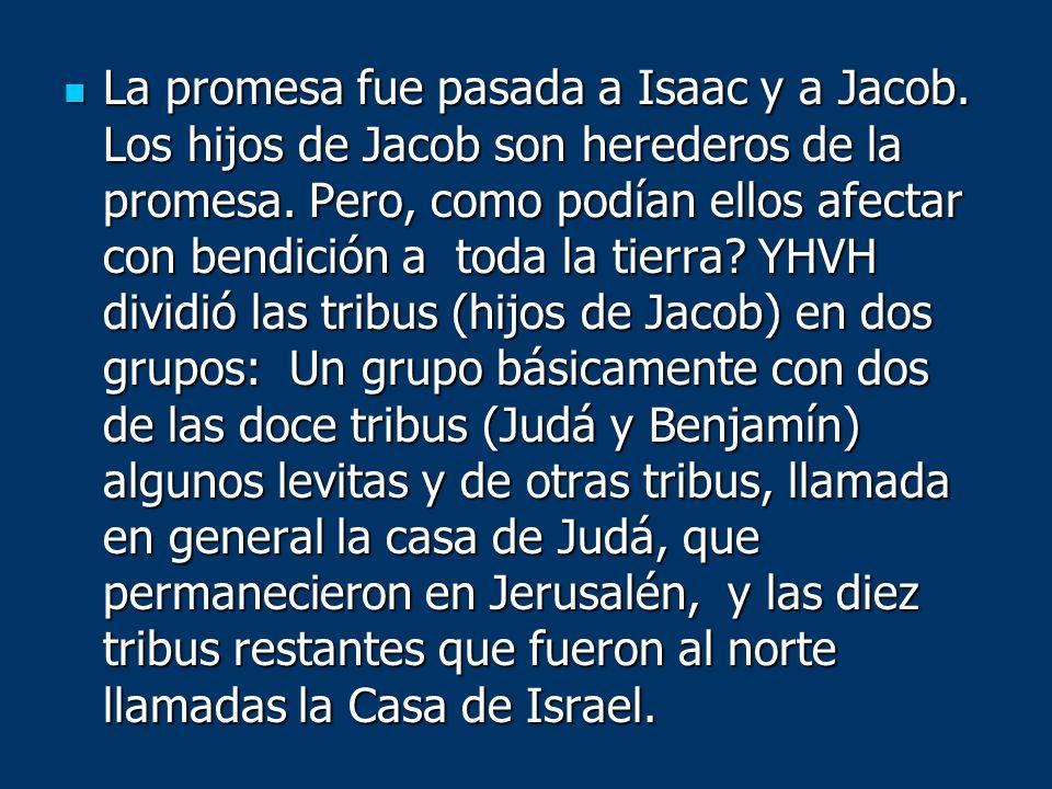La promesa fue pasada a Isaac y a Jacob. Los hijos de Jacob son herederos de la promesa. Pero, como podían ellos afectar con bendición a toda la tierr