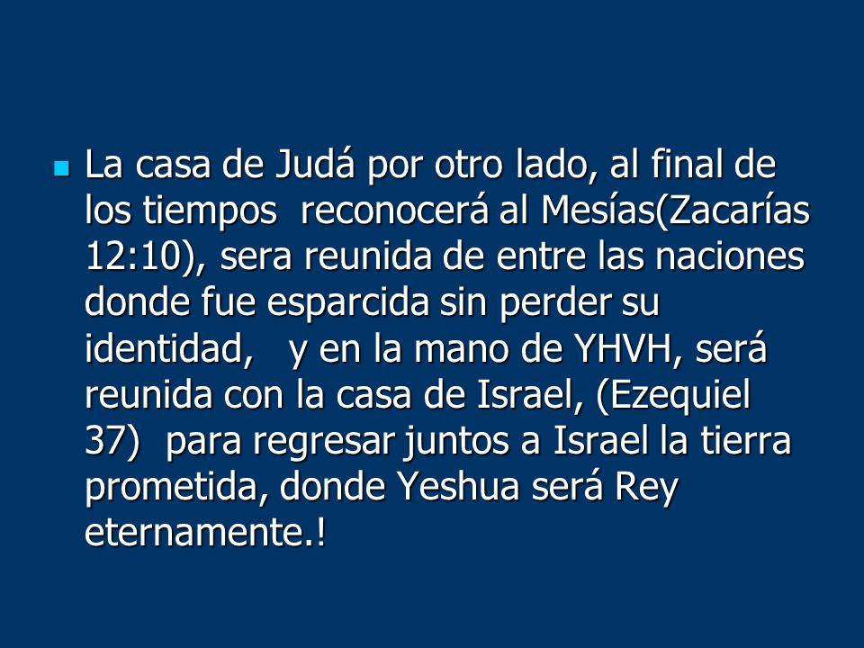 La casa de Judá por otro lado, al final de los tiempos reconocerá al Mesías(Zacarías 12:10), sera reunida de entre las naciones donde fue esparcida si