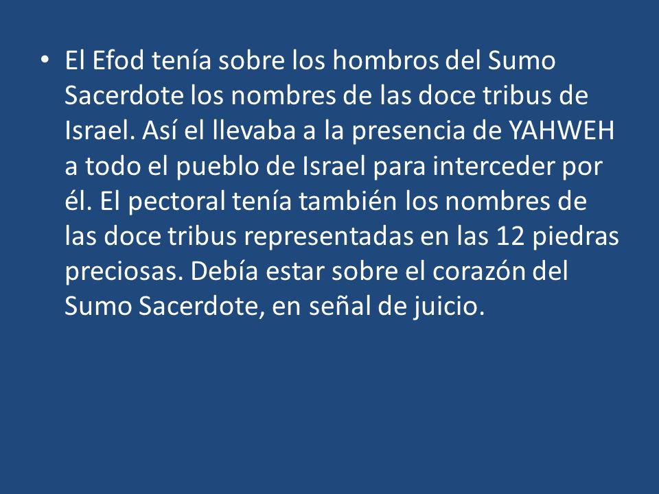 El Efod tenía sobre los hombros del Sumo Sacerdote los nombres de las doce tribus de Israel. Así el llevaba a la presencia de YAHWEH a todo el pueblo