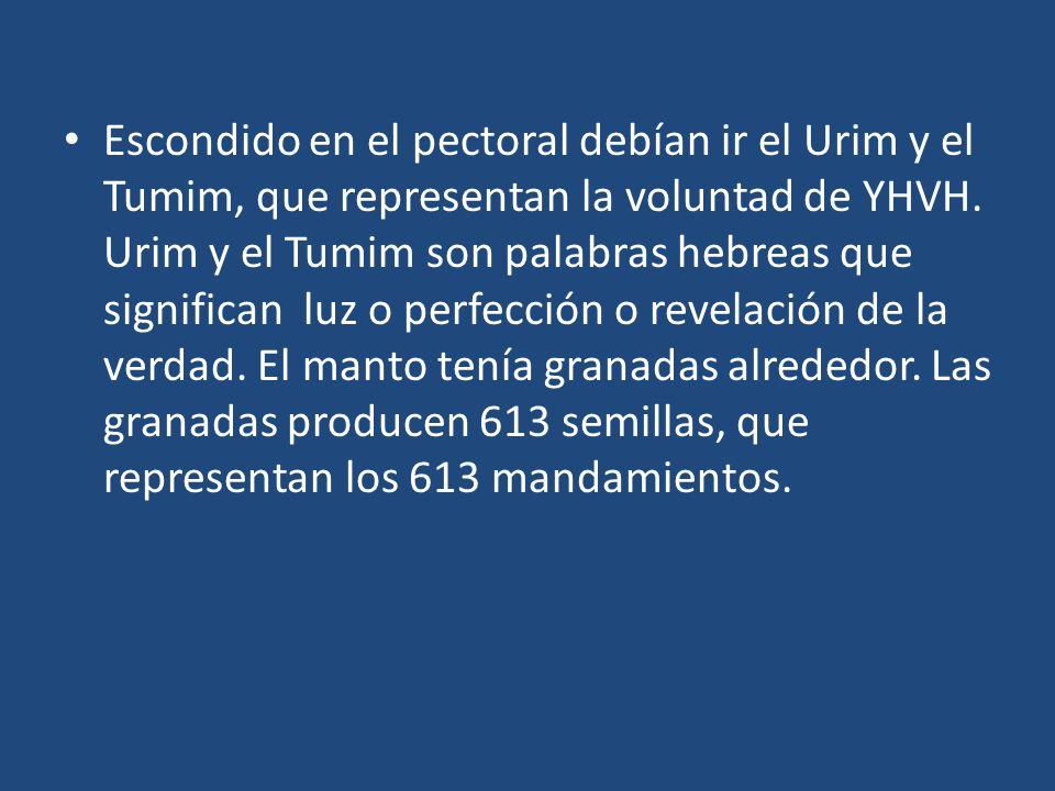 Escondido en el pectoral debían ir el Urim y el Tumim, que representan la voluntad de YHVH. Urim y el Tumim son palabras hebreas que significan luz o