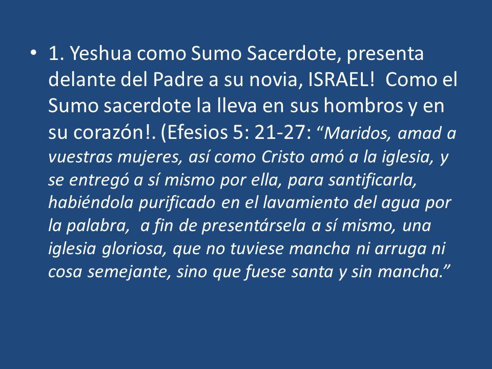 1. Yeshua como Sumo Sacerdote, presenta delante del Padre a su novia, ISRAEL! Como el Sumo sacerdote la lleva en sus hombros y en su corazón!. (Efesio