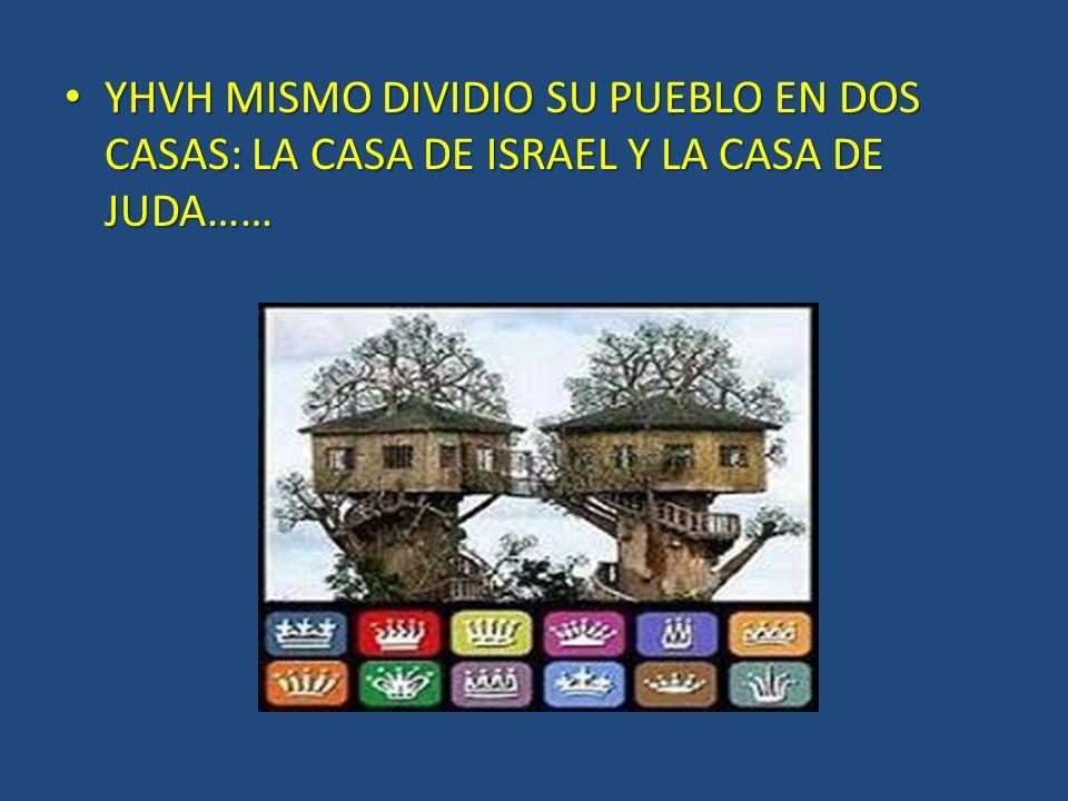YHVH MISMO DIVIDIO SU PUEBLO EN DOS CASAS: LA CASA DE ISRAEL Y LA CASA DE JUDA…… YHVH MISMO DIVIDIO SU PUEBLO EN DOS CASAS: LA CASA DE ISRAEL Y LA CAS