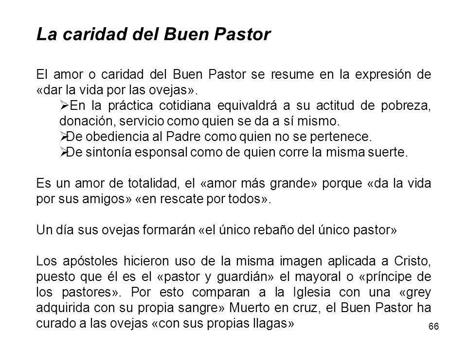 66 La caridad del Buen Pastor El amor o caridad del Buen Pastor se resume en la expresión de «dar la vida por las ovejas».