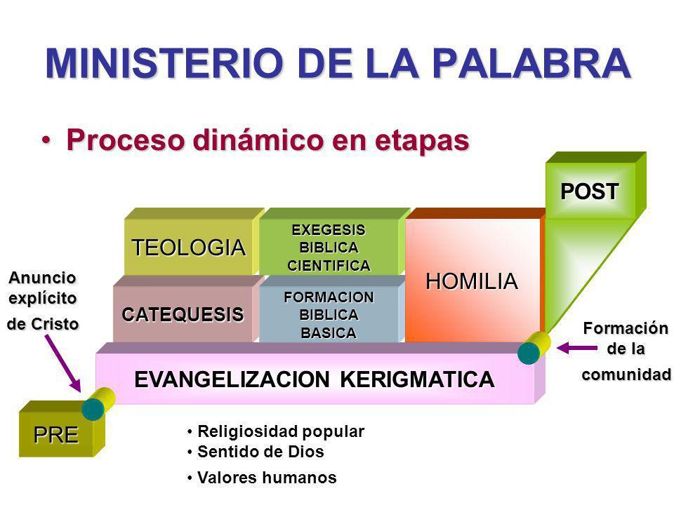 MINISTERIO DE LA PALABRA Proceso dinámico en etapasProceso dinámico en etapas EVANGELIZACION KERIGMATICA CATEQUESIS TEOLOGIA FORMACIONBIBLICABASICA EXEGESISBIBLICACIENTIFICA HOMILIA POST PRE Religiosidad popular Sentido de Dios Valores humanos Anuncioexplícito de Cristo Formación de la comunidad