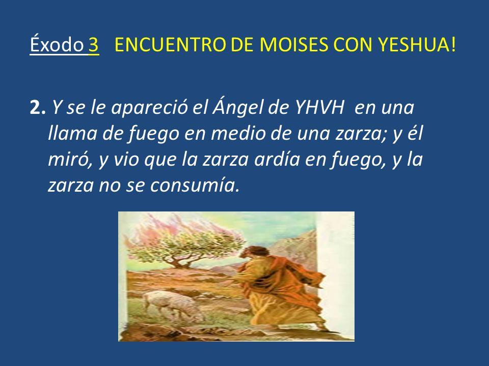 Éxodo 3 ENCUENTRO DE MOISES CON YESHUA! 2. Y se le apareció el Ángel de YHVH en una llama de fuego en medio de una zarza; y él miró, y vio que la zarz