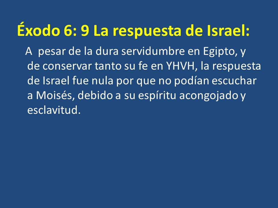 Éxodo 6: 9 La respuesta de Israel: A pesar de la dura servidumbre en Egipto, y de conservar tanto su fe en YHVH, la respuesta de Israel fue nula por q