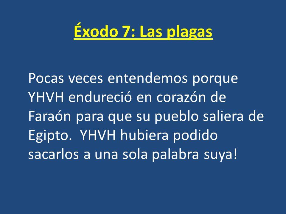 Éxodo 7: Las plagas Pocas veces entendemos porque YHVH endureció en corazón de Faraón para que su pueblo saliera de Egipto. YHVH hubiera podido sacarl