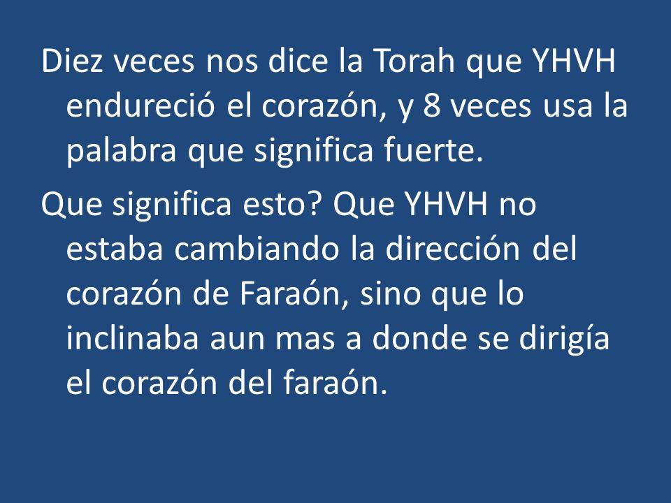 Diez veces nos dice la Torah que YHVH endureció el corazón, y 8 veces usa la palabra que significa fuerte. Que significa esto? Que YHVH no estaba camb