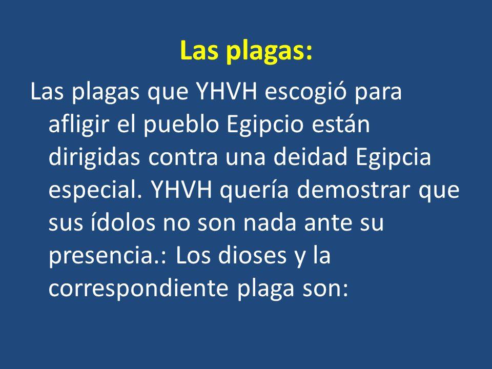 Las plagas: Las plagas que YHVH escogió para afligir el pueblo Egipcio están dirigidas contra una deidad Egipcia especial. YHVH quería demostrar que s