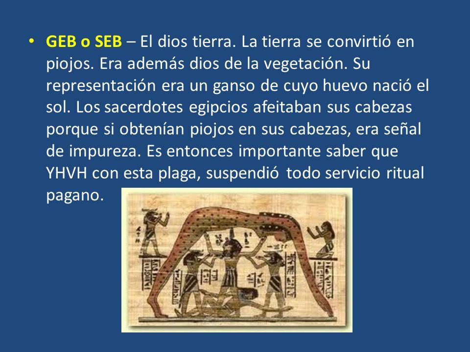 GEB o SEB – El dios tierra. La tierra se convirtió en piojos. Era además dios de la vegetación. Su representación era un ganso de cuyo huevo nació el