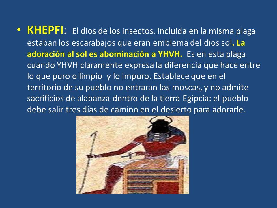 KHEPFI: El dios de los insectos. Incluida en la misma plaga estaban los escarabajos que eran emblema del dios sol. La adoración al sol es abominación