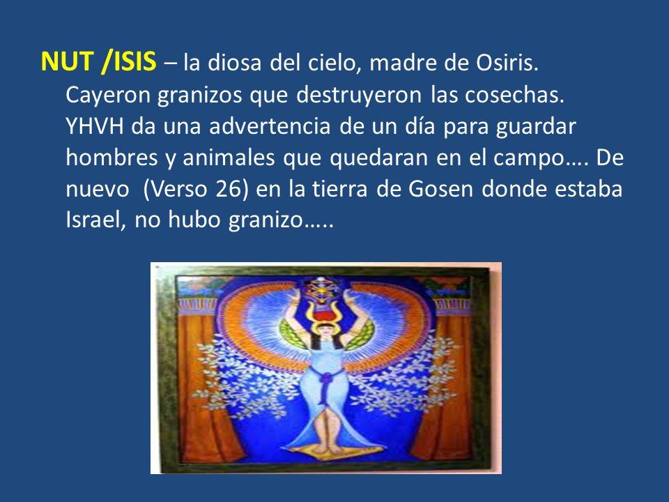 NUT /ISIS – la diosa del cielo, madre de Osiris. Cayeron granizos que destruyeron las cosechas. YHVH da una advertencia de un día para guardar hombres