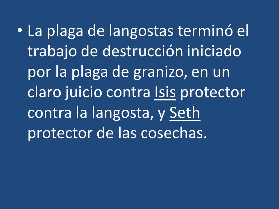 La plaga de langostas terminó el trabajo de destrucción iniciado por la plaga de granizo, en un claro juicio contra Isis protector contra la langosta,